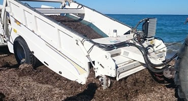 MACHINE SPECIALLY CONCEIVED TO REMOVE SEAWEED AND SARGASSO  sargassum IN LARGE BEACHES.
